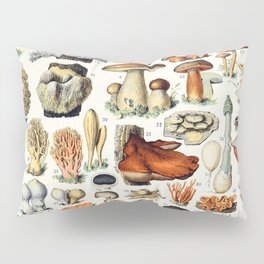 Adolphe Millot - Champignons A - French vintage poster Pillow Sham
