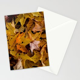 Punctured Stationery Cards