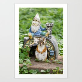 Momma Red Squirrel at Toad House Art Print
