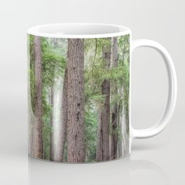 Forest Trail, Pacific Northwest, Washington State Coffee Mug