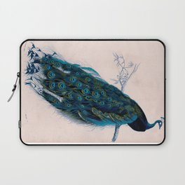 Vintage peacock bird print colorful feathers 1800s antique art nouveau deco nature book plate Laptop Sleeve