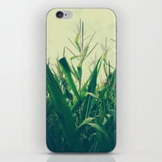 in the field iPhone & iPod Skin