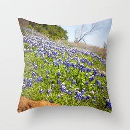 Texas Springtime Throw Pillow