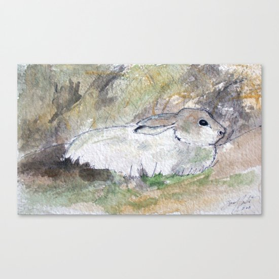 Hare Sketch #2 Canvas Print