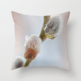 Pussy willow 069 Throw Pillow