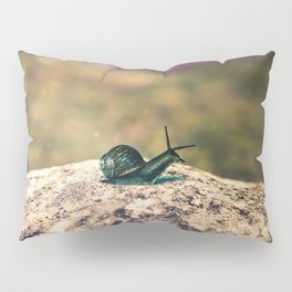 Slow Dream Pillow Sham