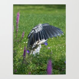 Welcome Heron Poster