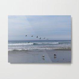 Flight of the Sea Birds Metal Print