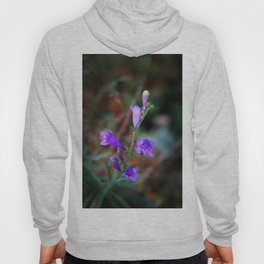 Blue Bells Hoody