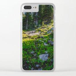 Near Fairy Lake, Gallatin County, MT Clear iPhone Case