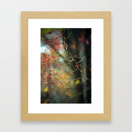 Dusk Bloom Framed Art Print