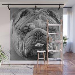 Bulldog Black and White Wall Mural