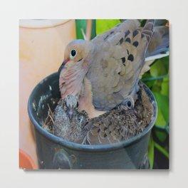 A Bird in A Bucket, Part 3 Metal Print