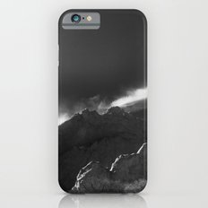 Kissing Camels B&W iPhone 6s Slim Case