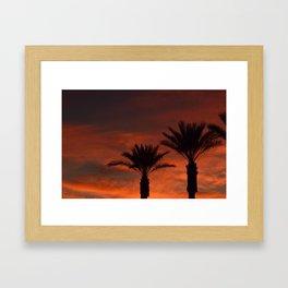 Palm Sunset - II Framed Art Print
