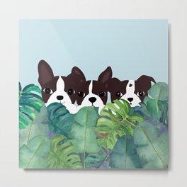 Dogs garden Metal Print