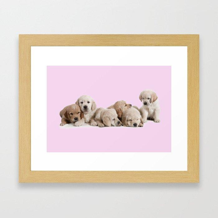 Golden Retriever Puppies Framed Art Print