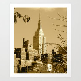 View From a Roof Top Art Print