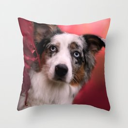 Australian Shepherd and Autumn Throw Pillow