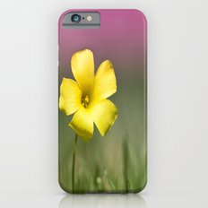 Yellow on Pink iPhone 6s Slim Case