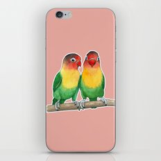 Fischer's lovebirds iPhone Skin