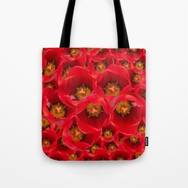 Venetian Red Tulips Tote Bag