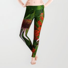 Coneflowers and Butterfly weed 7605 Leggings