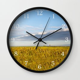 Morass grass in sun rising Wall Clock