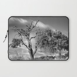Windy sunset. Wonderful mountain almond. Square Laptop Sleeve