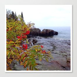 Rainy day color on the North Shore Canvas Print