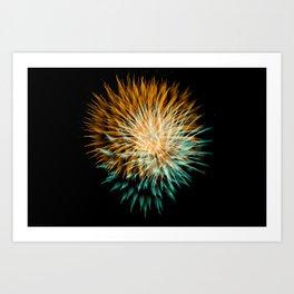 Firework Creations - Tulipfest 21 Art Print