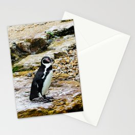 Penguin stare Stationery Cards