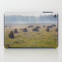 buffalo iPad Cases featuring Buffalo by Claire Laminen Photo