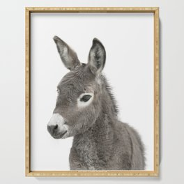 Baby Donkey Serving Tray