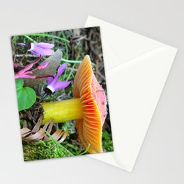 Shooting Stars and Waxy Cap Nature Scene Stationery Cards