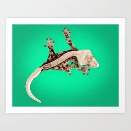 Crested gecko art print Art Print