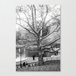 Trees #9 Canvas Print