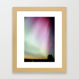 Purple Splendor Framed Art Print