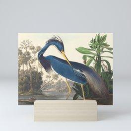 Louisiana Heron, Robert Havell after John James Audubon Mini Art Print