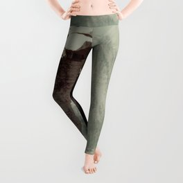 Half Dome Leggings