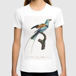 Long-stranded African roller from Histoire Naturelle des Oiseaux de Paradis et Des Rolliers (1806) b T-shirt