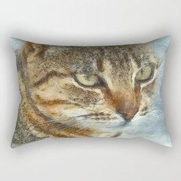 Stunning Tabby Cat Close Up Portrait Rectangular Pillow