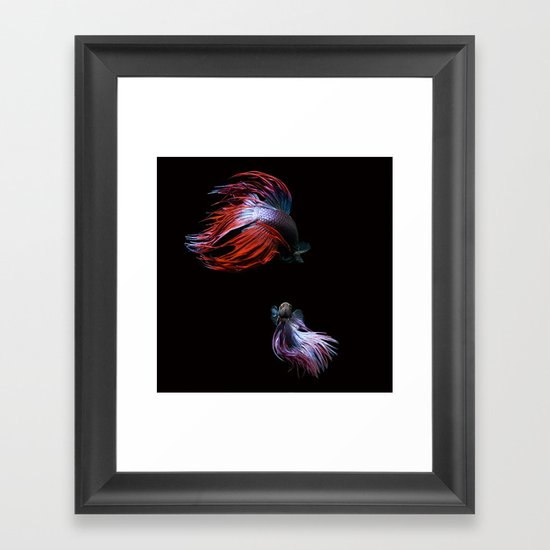 Betta No.2 Framed Art Print