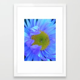Flower 2 Framed Art Print