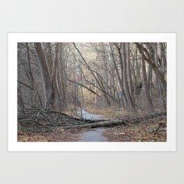 Patapsco State Park Art Print