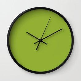 Stowaway ~ Fern Green Wall Clock