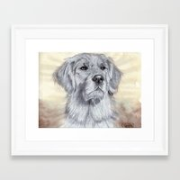 golden retriever Framed Art Prints featuring Golden Retriever by Cindy-R