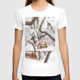 pigeons sitting on bird feeder T-shirt
