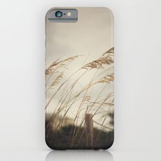 Wild Oats to Sow iPhone 6s Slim Case