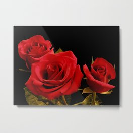 Red Roses in a cluster Metal Print